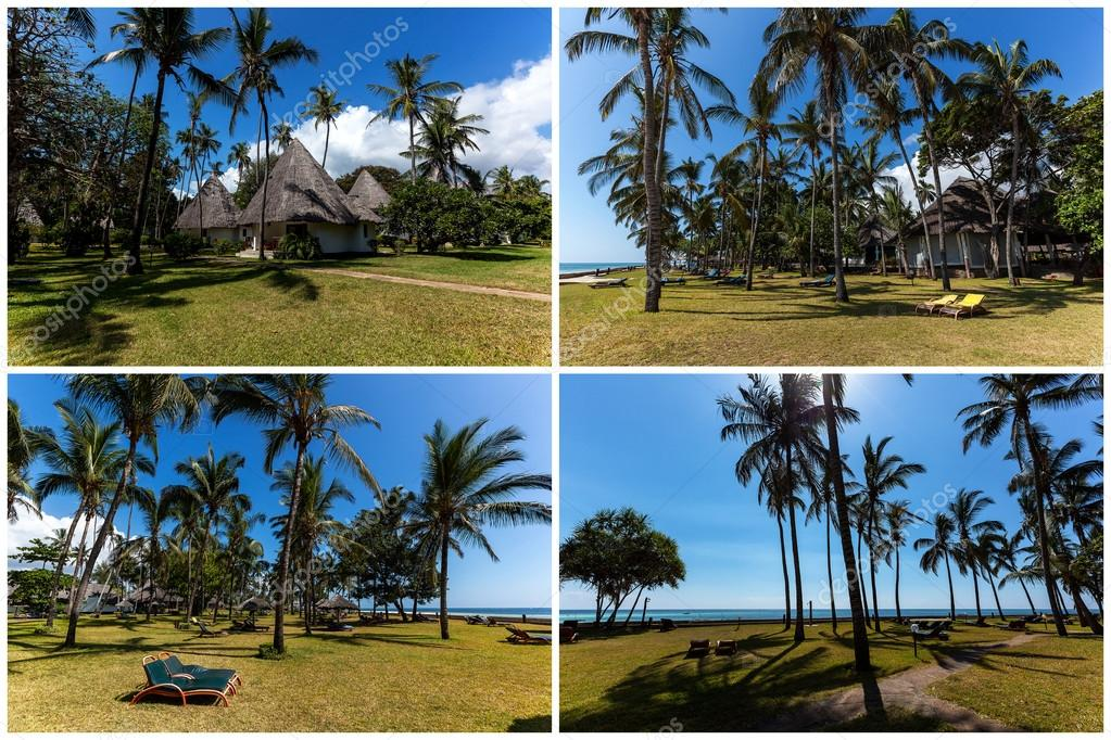 Palms on the beach in Mombasa, beach, mombasa, Kenya collage