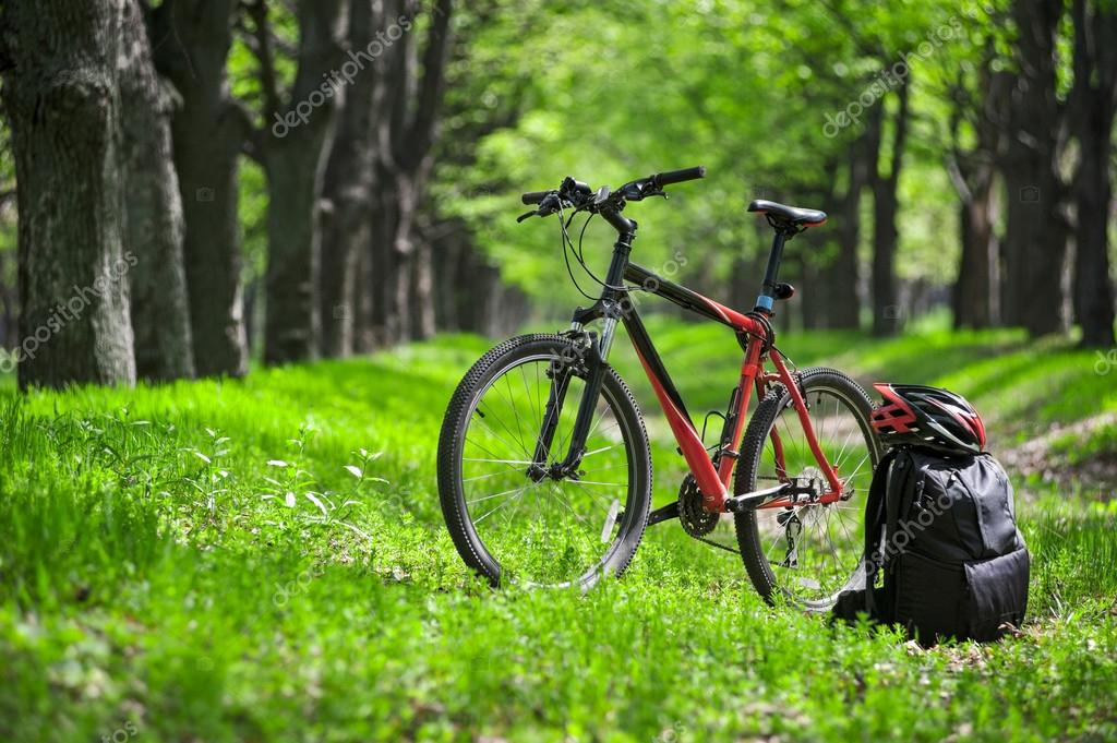 Фотообои mountain bike, backpack and helmet on a trail in the forest