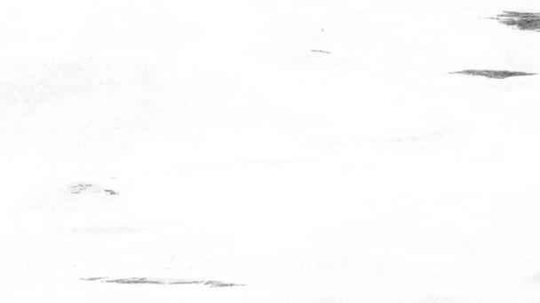 Papírové bílé textury grunge