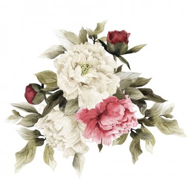 Watercolor Bouquet of peonies,