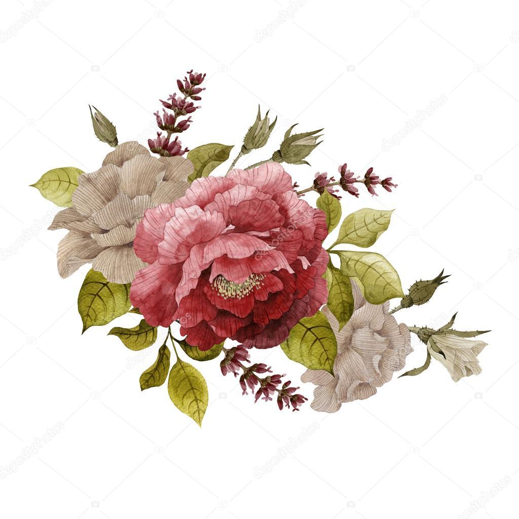 Watercolor roses, peonies and lavender — Stock Photo © ollallya ...
