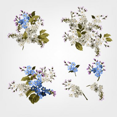 Blue forget me not flowers bouquets