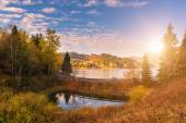 Photo Colorful sunny autumn landscape with golden colored trees