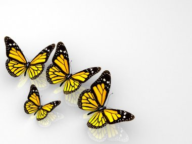 Group of beautiful 3d butterflies