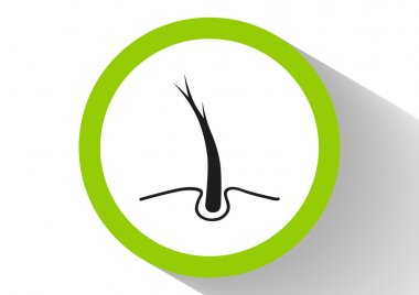Hair Web icon