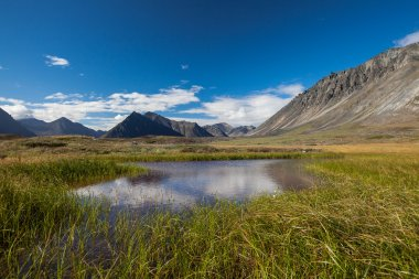 Serenity lake in tundra on Alaska