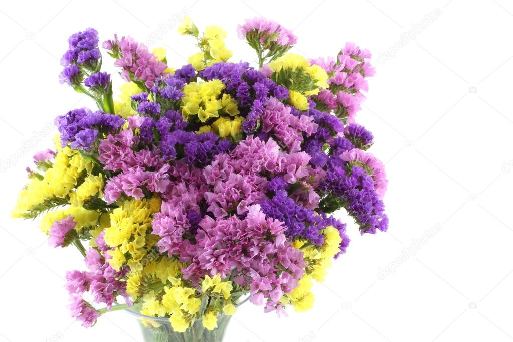 Pink purple yellow statice flowers bouquet on white background pink purple yellow statice flowers bouquet on white background stock photo mightylinksfo