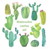 Sada akvarel kaktus