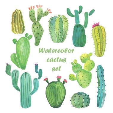 Watercolor cactus set