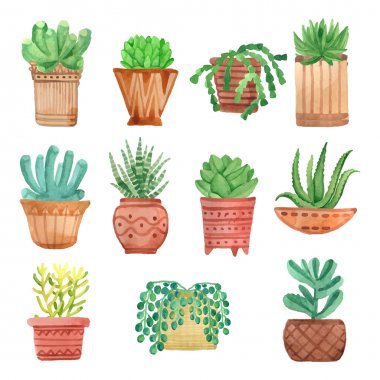 Watercolor houseplants in pots set