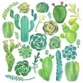 Akvarel kaktusů a sukulentů set