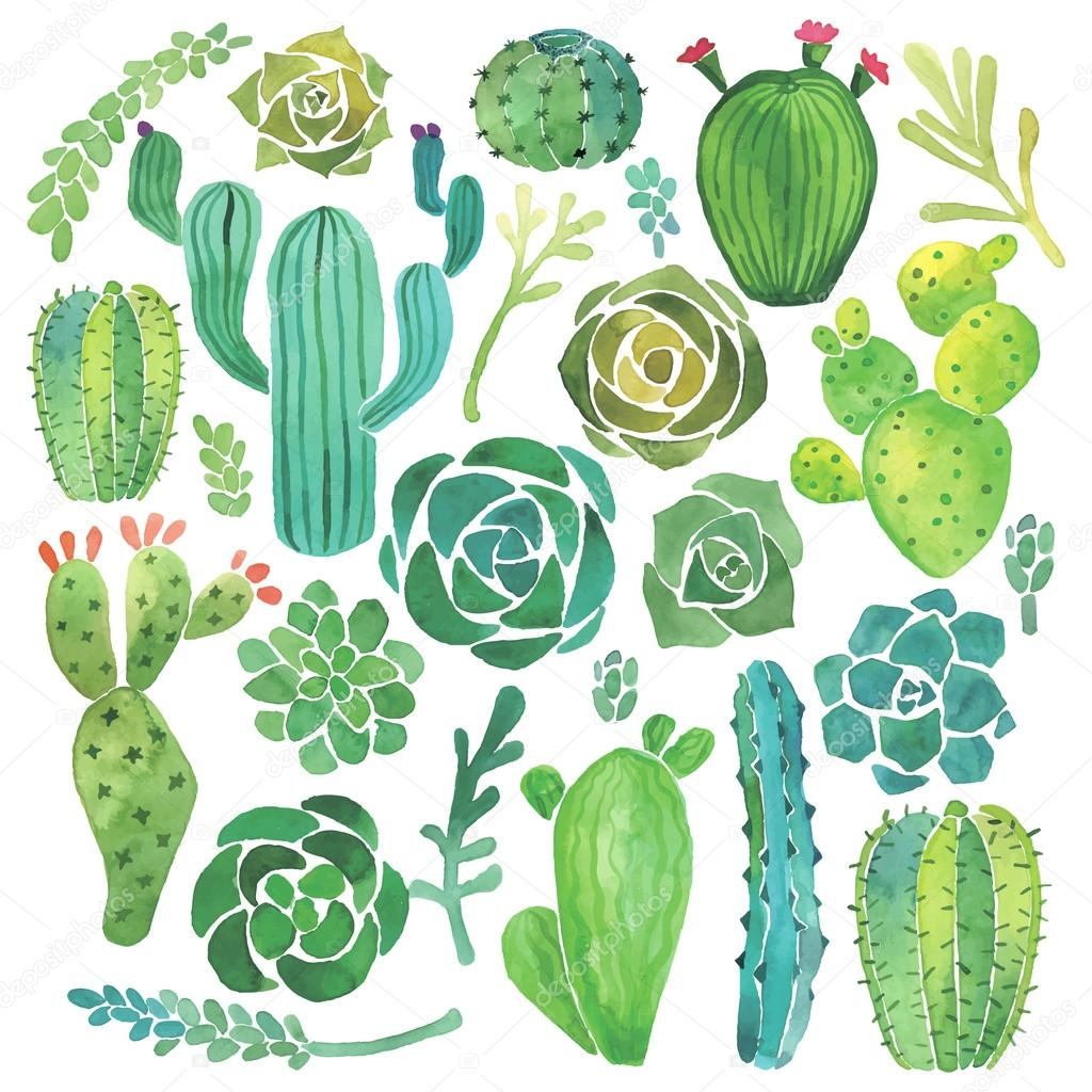 Watercolor cactus and succulent set