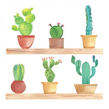 Watercolor cactus in pots on shelf