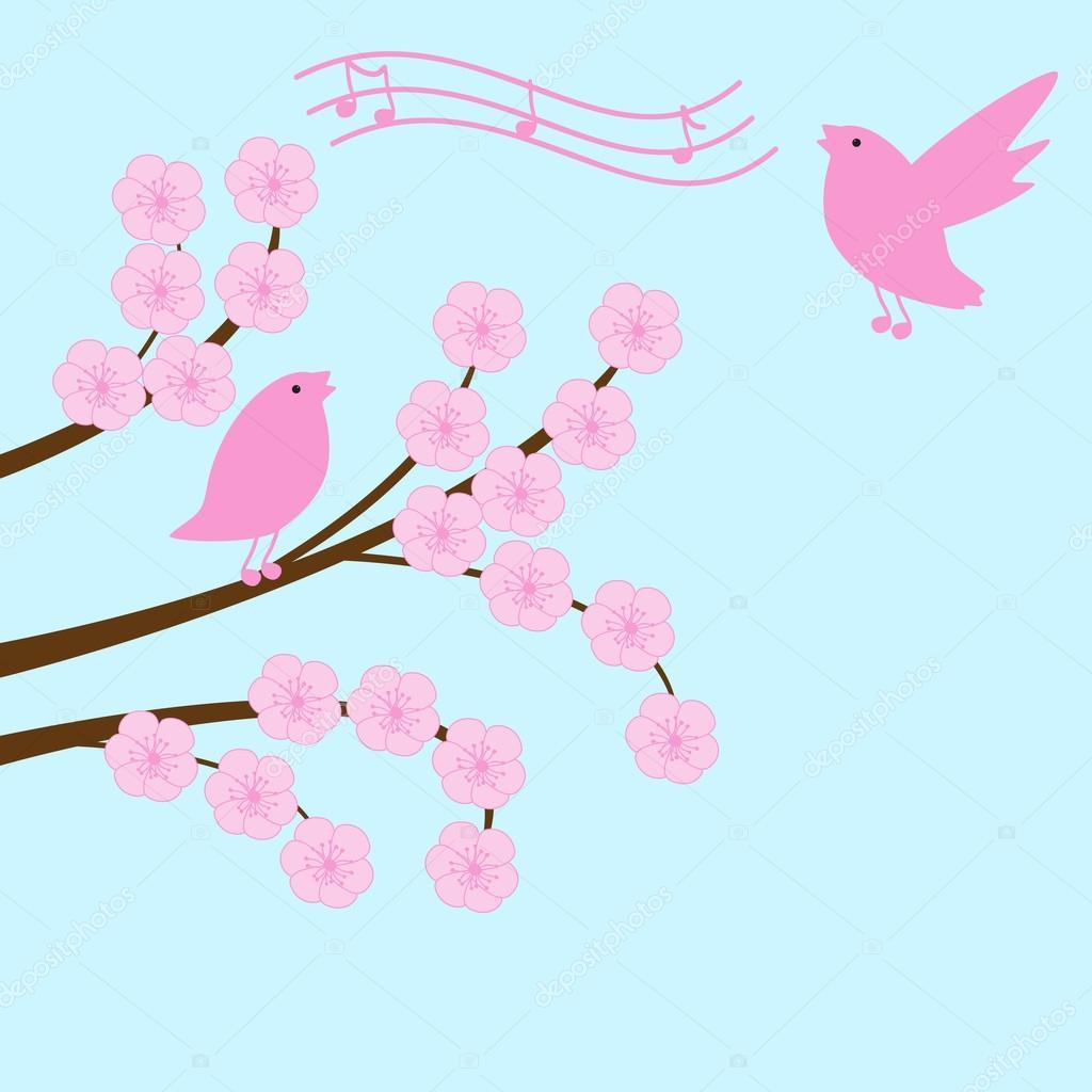 Blossom sakura branch