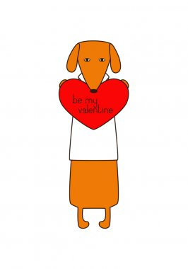 Cute orange colored brown contoured dachshund in white shirt standing on hind legs with dissolved forelegs, holding red heart with lettering be my valentine inside it. Declaration of love. Flat style illustration stock vector