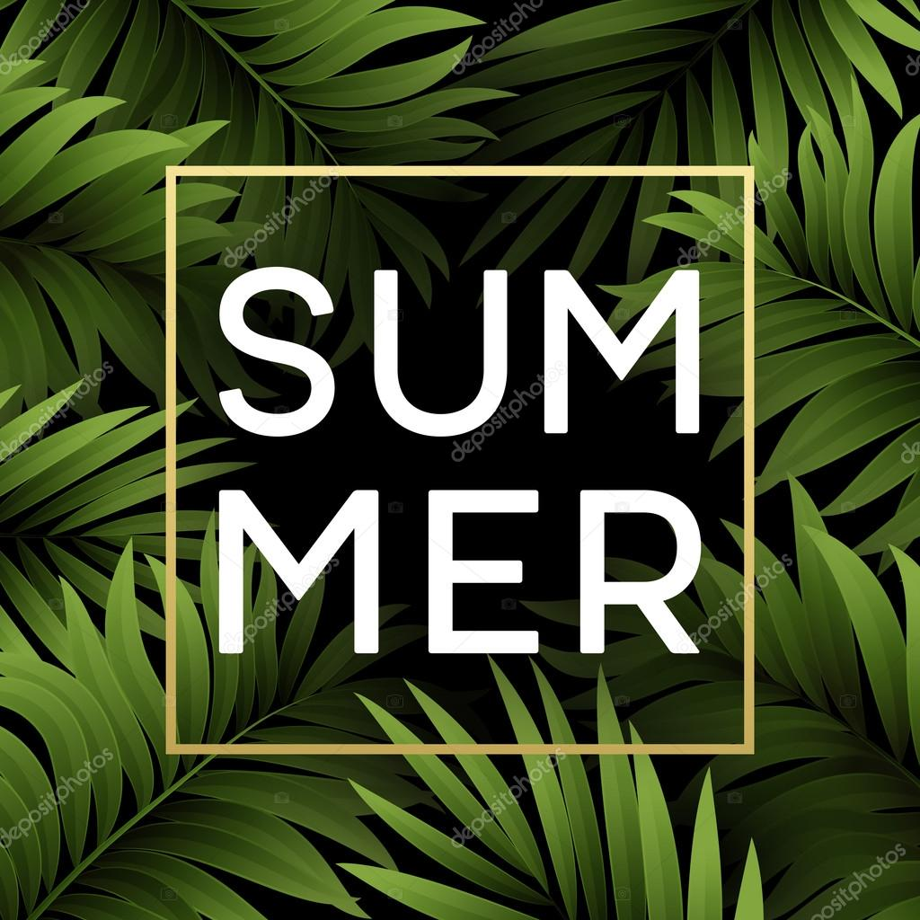Summer tropical background of palm leaves. Tropical palm leaves. Tropical summer design. Background for summer design. Summer background of palm leaves