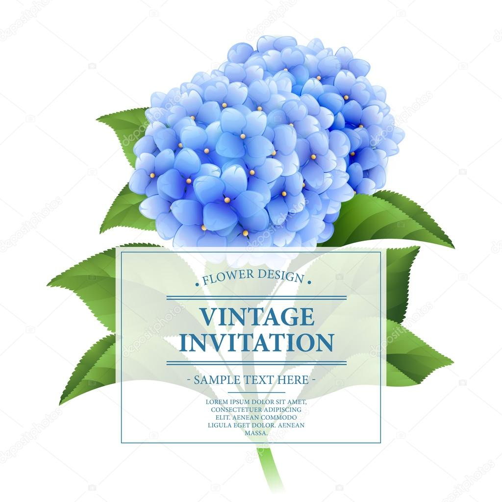 Invitation card. Blue hydrangea flowers. Vintage floral card.  Vector illustration