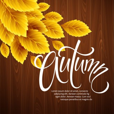 Autumn background with leaf and wood texture. Vector illustration