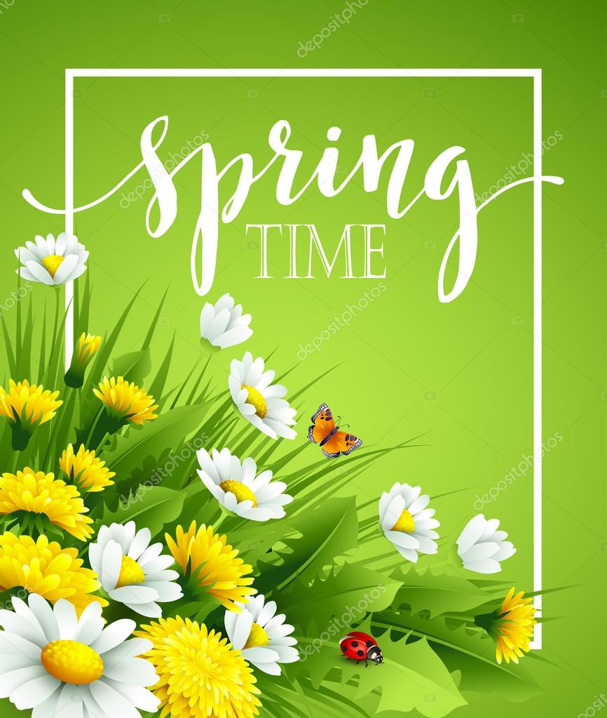 Fresh spring background with grass, dandelions and daisies. Vector illustration