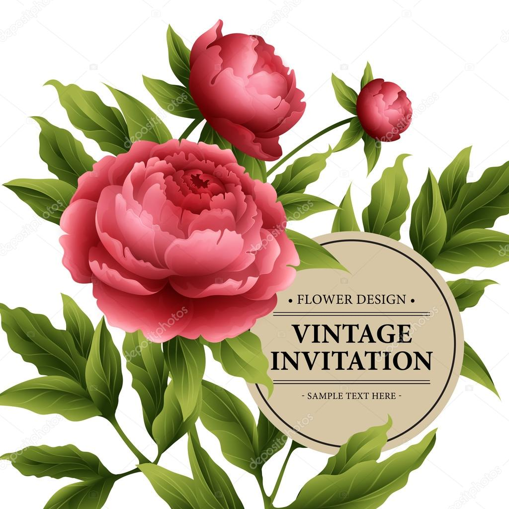Luxurious  peony flower and leaves greeting card. Vector illustration