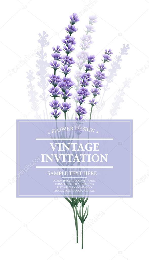 Vintage card with lavender flower. Vector illustration