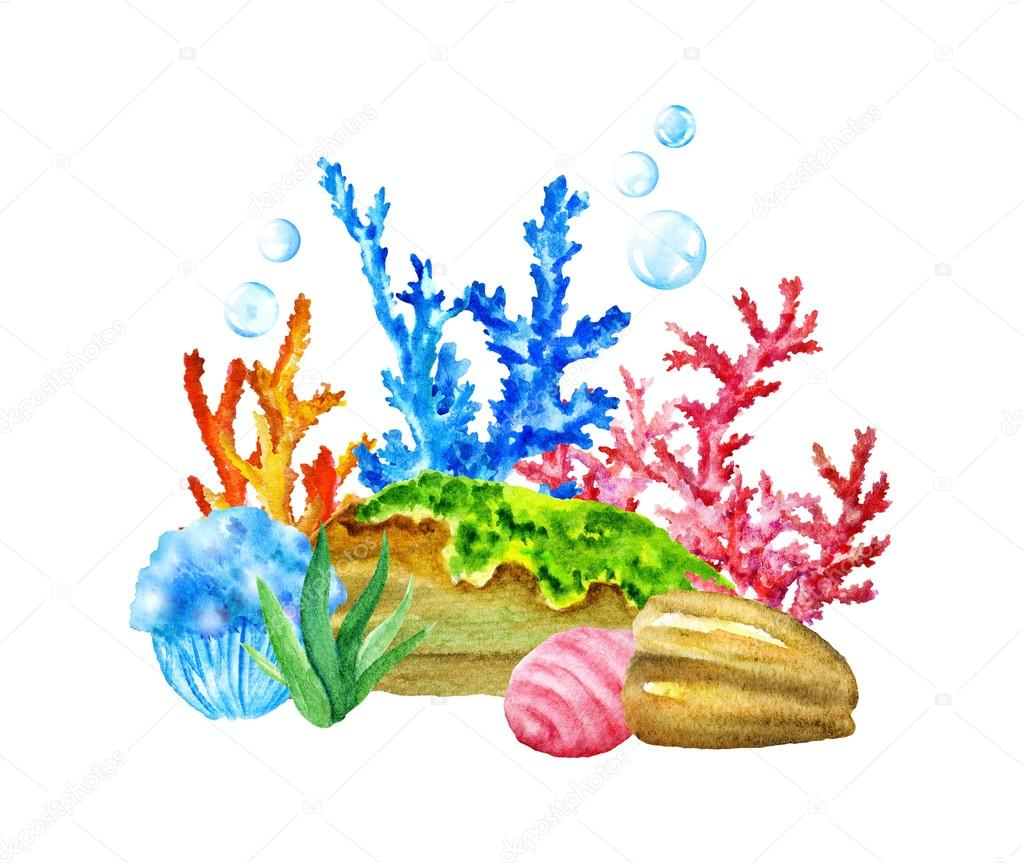 Exotic Caribbean Sea. Multicolor Stones,Corals, Seaweeds, Funny Fishes, Shells, Crab.