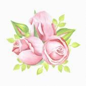 Fényképek Rózsa csokor, akvarell