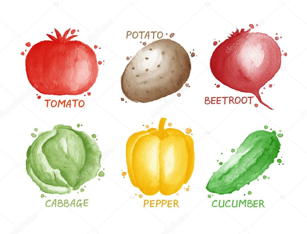 Vegetables set - tomato, potato, beetroot, cabbage, pepper, cucumber