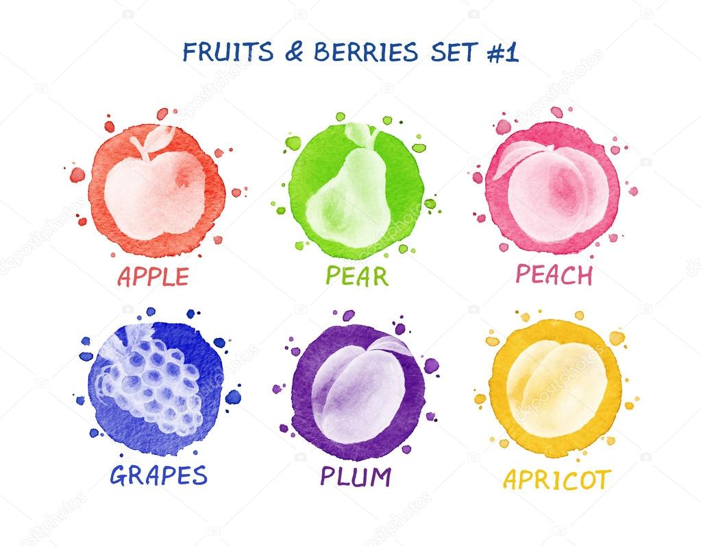 Fruits and berries set - apple, pear, peach, grape, plum, apricot.