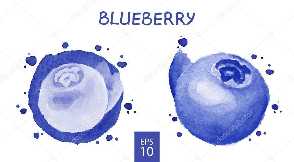 Fruits set - Blueberry
