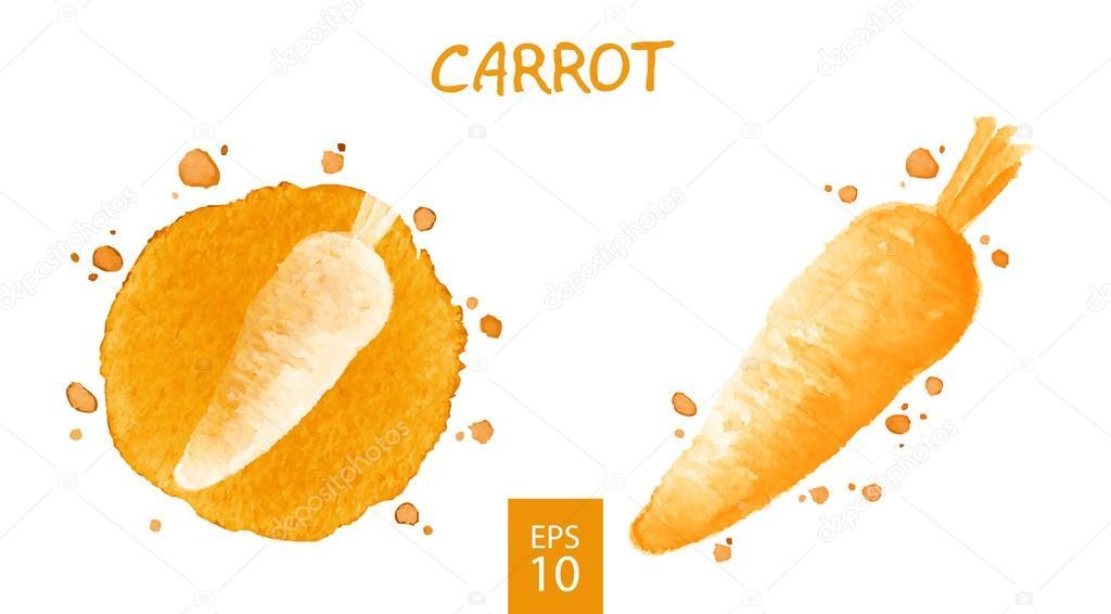 Vegetables set - carrot