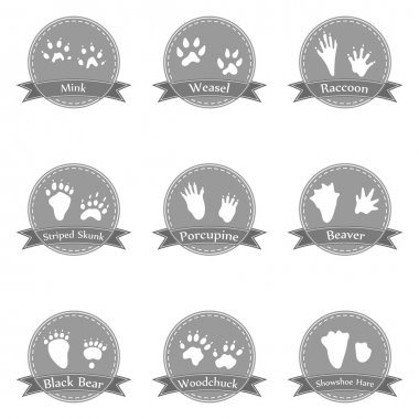 Collection icons with animal footprints