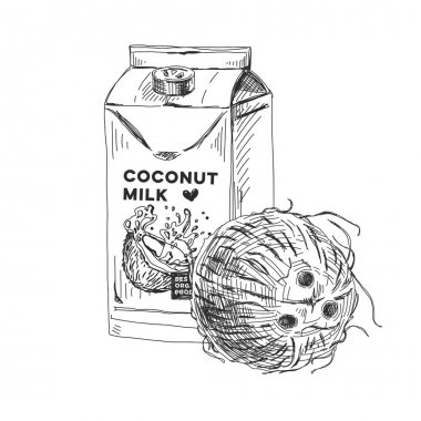 Coconut milk package, retro hand drawn vector illustration. Natural organic coco juice, sketch vintage engraving isolated on white background. icon