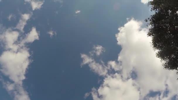 Video B82055194