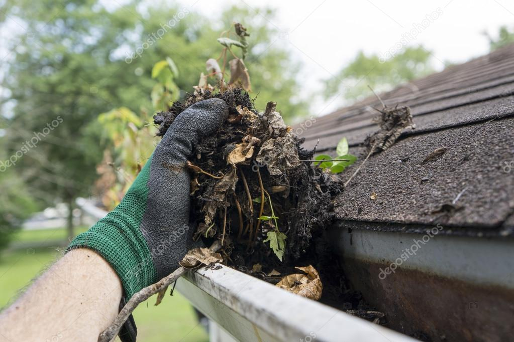 Cleaning Gutters During The Summer