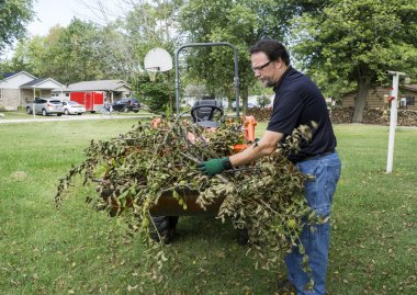 Tree Trimmer Loading Limbs