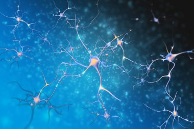 Neurons of the nervous system cells.