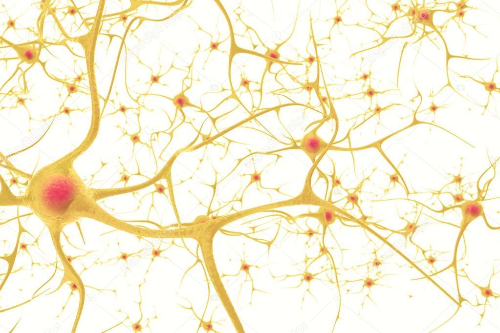 Neuronen im Nervensystem Menschen mit der Wirkung der Tiefenschärfe ...