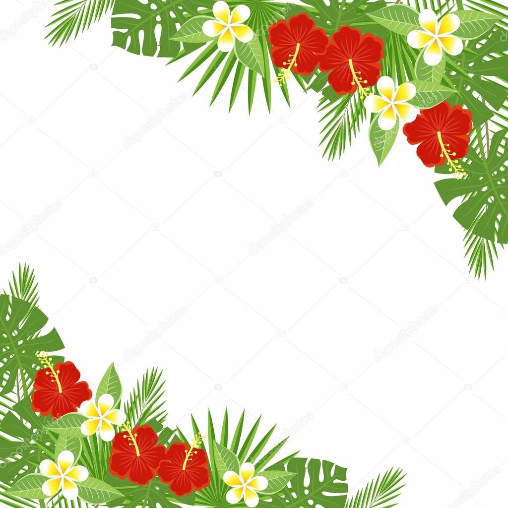 branches and leaves of tropical plants. Floral background with space for text. Tropical flowers and leaves - hibiscus, palm tree, Monstera, plumeria. Template for postcards, flyers, brochures.