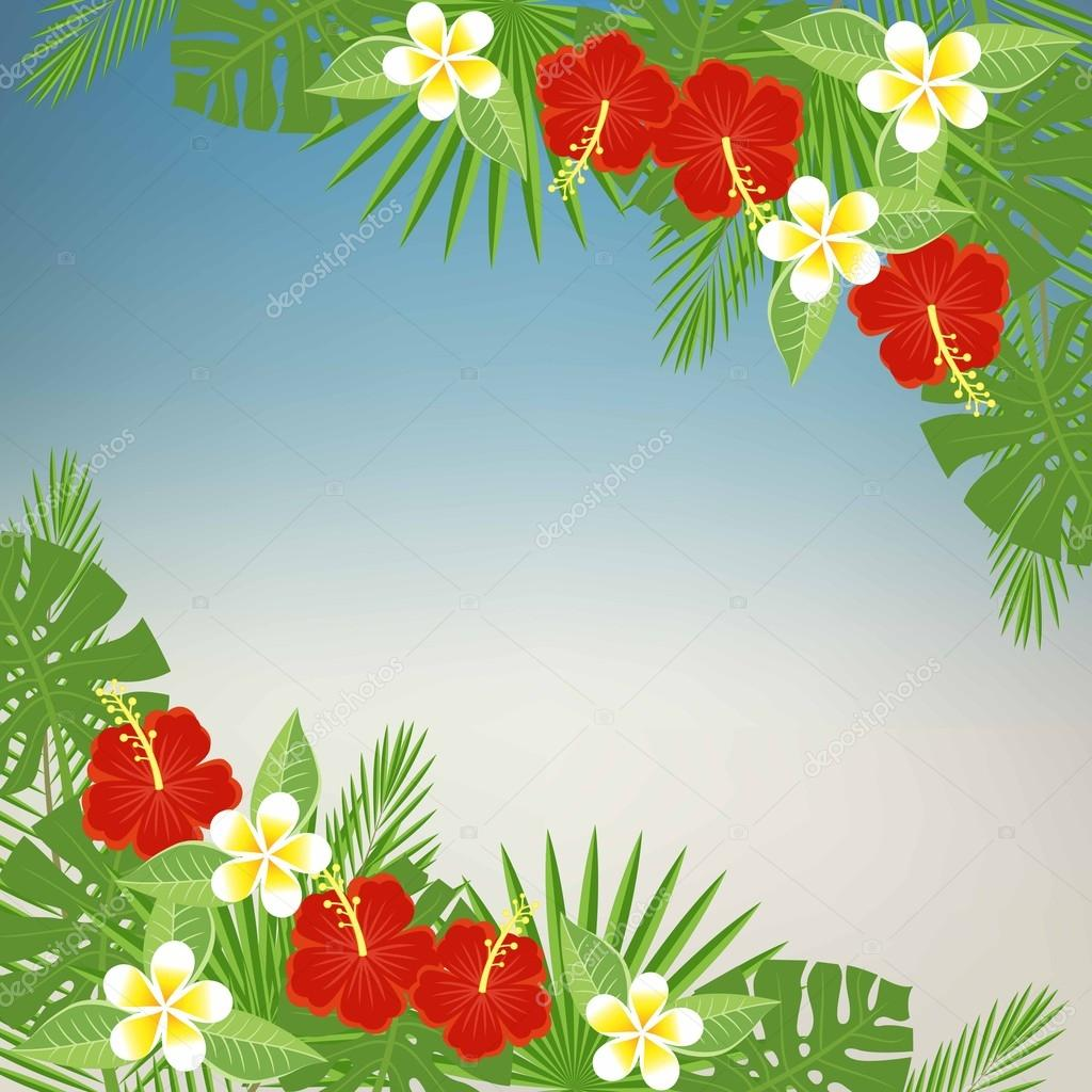 Floral background with space for text. Tropical flowers and leaves - hibiscus, palm tree, Monstera, plumeria. Template for postcards, flyers, brochures. vector abstract blurred background