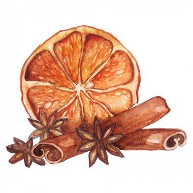 Watercolor lemon citrus anise cinnamon isolated