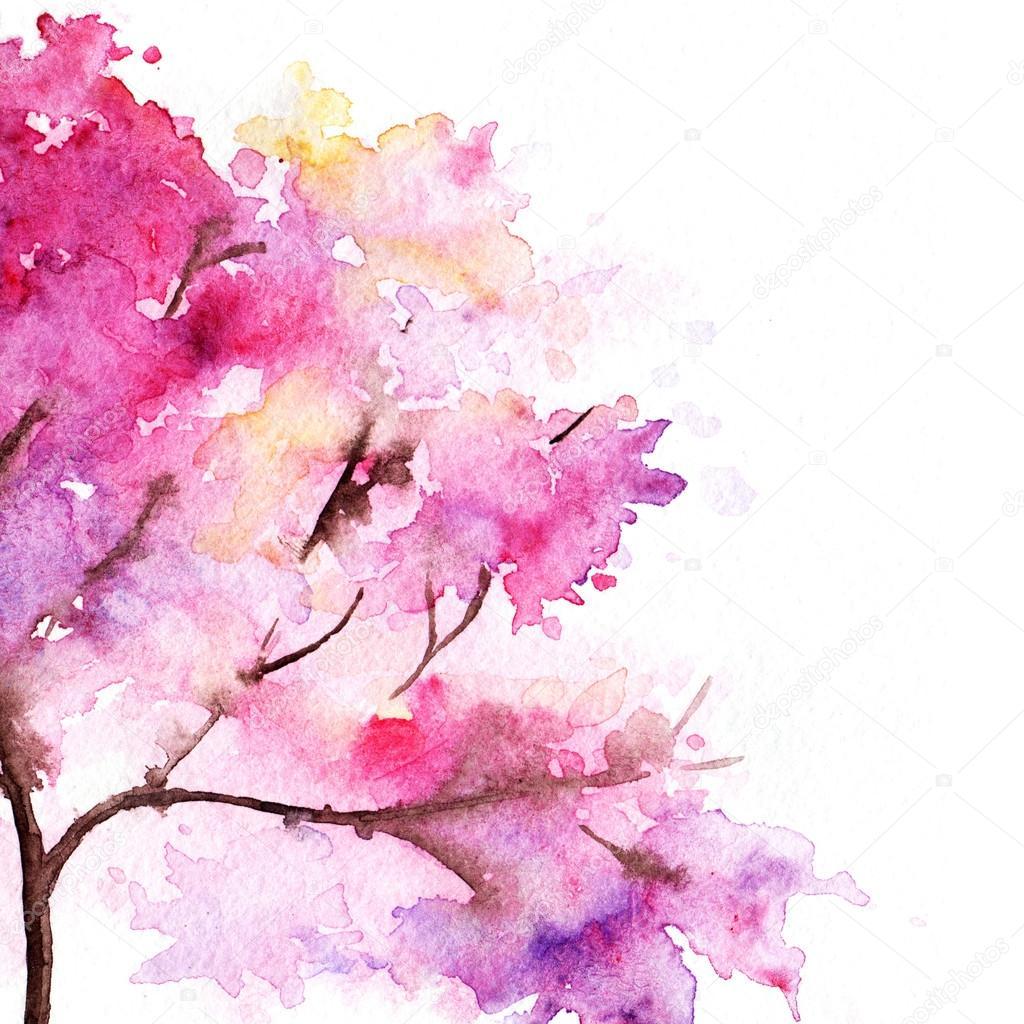 Acquerello singola rosa ciliegia sakura albero isolato for Sakura albero