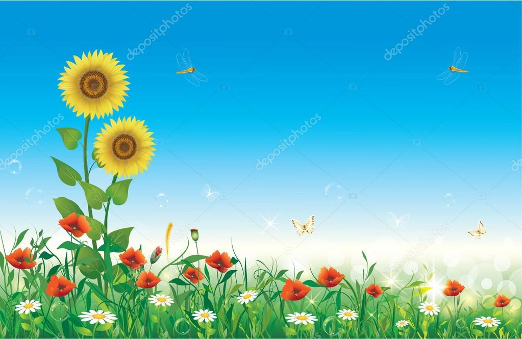 Flowery meadow with flowers