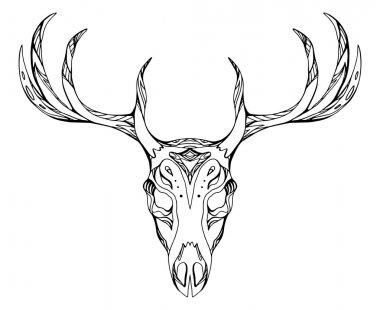 deer skull with antlers