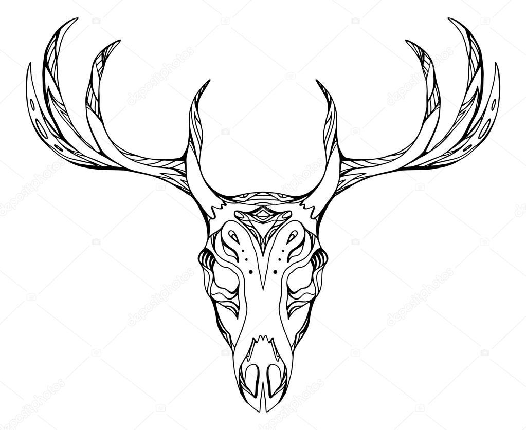 deer skull with antlers — Stock Vector © veleri #117202622