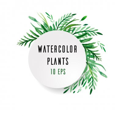 Cover with watercolor plants with place for text on white background stock vector