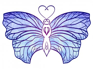 Hand-drawn doodle  butterfly