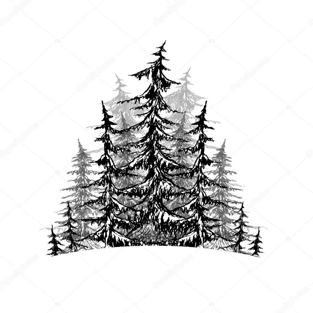 Black and white sketch of trees.