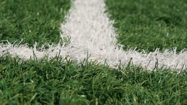 Nahaufnahme von Out-of-Bounds Linie auf einem Rasen-Fußballplatz
