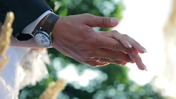 Wedding rings bride and groom hands close-up romance in nature on a sunny day wedding video